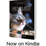 Rescued Now Available on Kindle Worldwide