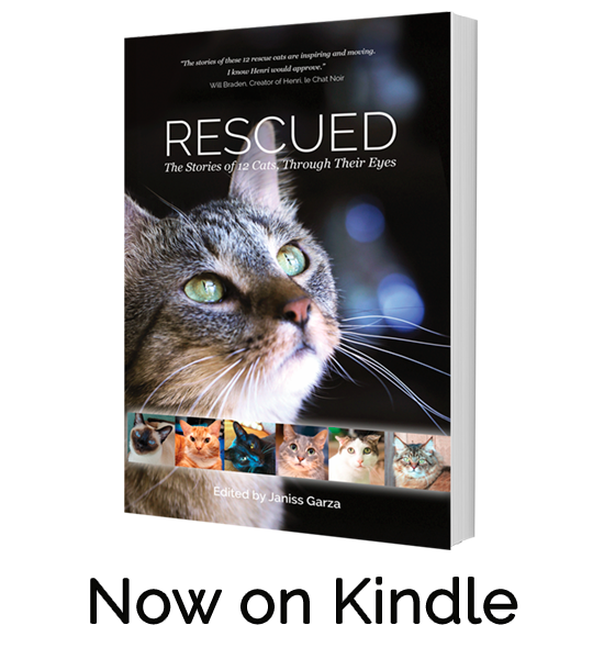 Rescued now on Kindle